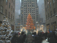 Rockefeller Center Tree Lighting 12-2-2015 & New York City by Natives Blog | We know New York Cityu2026weu0027re from here.